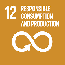 Sustainable Development Goal 12 –  SUSTAINABLE CONSUMPTION AND PRODUCTION