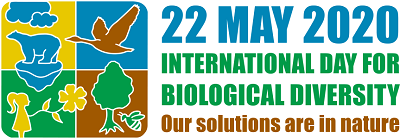 International Biodiversity day 2020