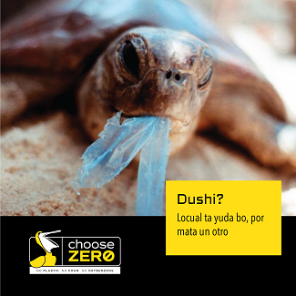 Choose zero awarenes campaign products that are harmful to the environment